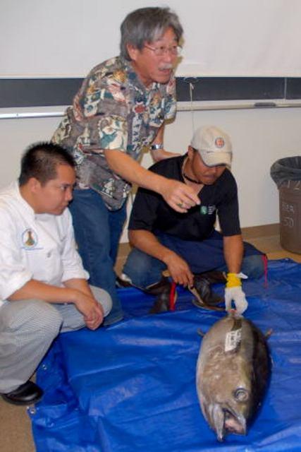 Brooks Takenaka - United Fishing Agency Ahi